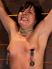 Wrist suspension while impaled on a cock & vibratorEach brutal orgasm weakens & further impales.