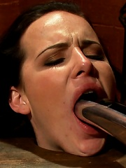 Katie St. Ives, Bound Tight and Shocked!